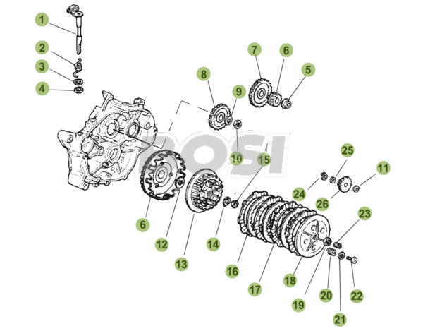 trasmissione-primaria-frizione